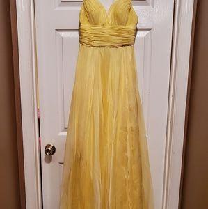 Prom dress/Ball grown